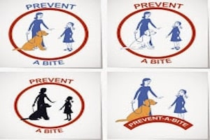 Dog Bites Prevention